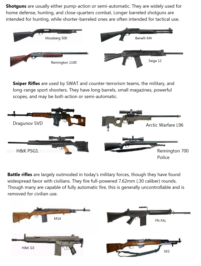 Copy (2) of WeaponsRecognition.png
