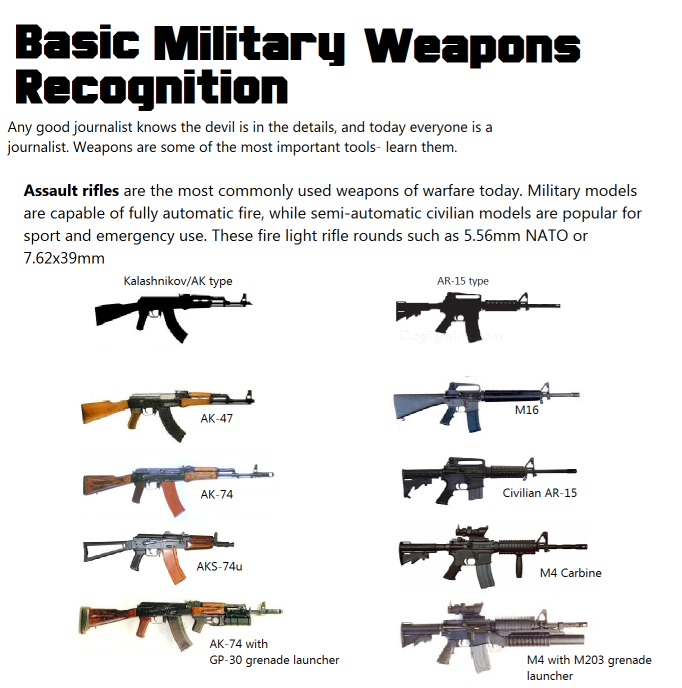 Copy (4) of WeaponsRecognition.png